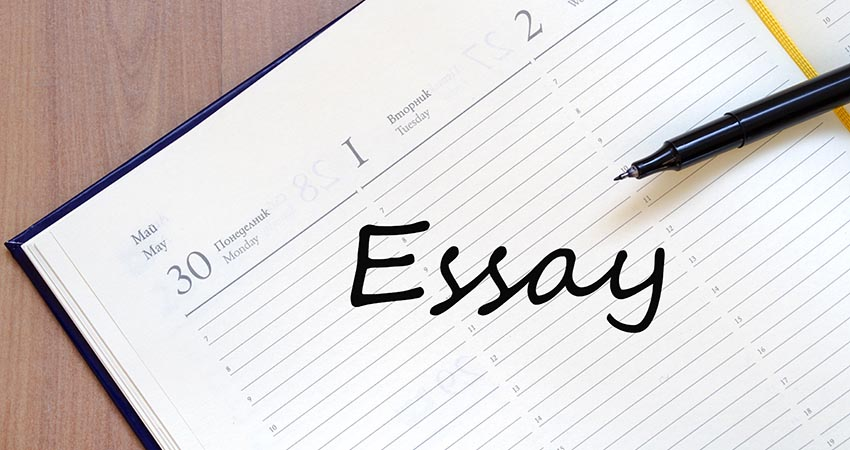 write essays for money
