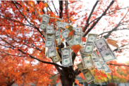 Here's How You Can Save Money This Fall